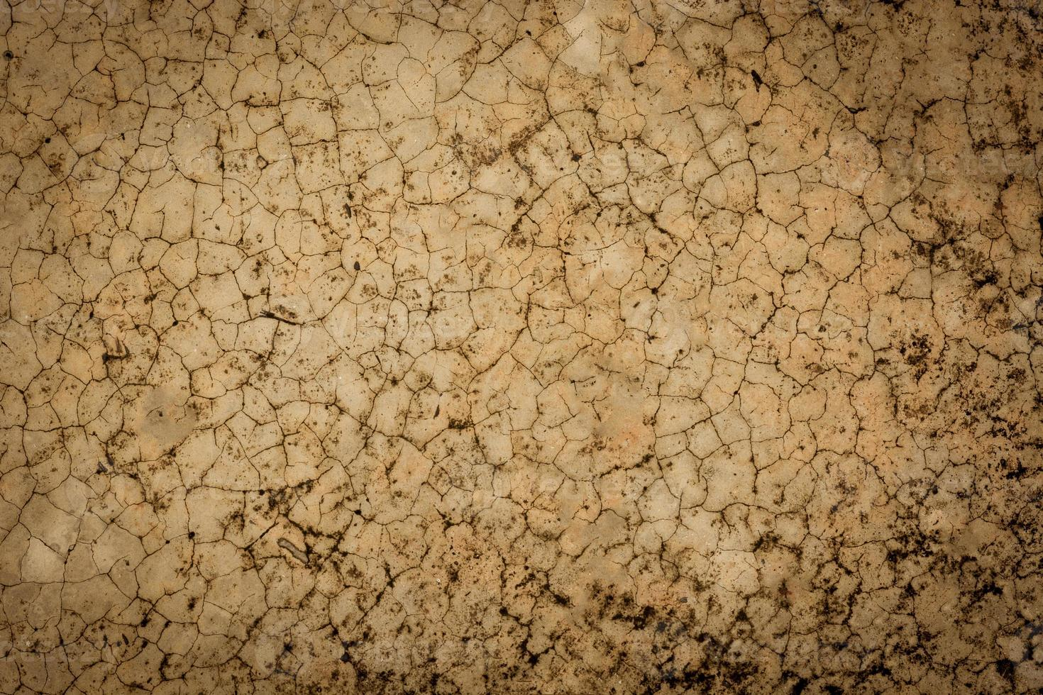 Fond de texture de sol en ciment fissuré marron entrez le texte photo