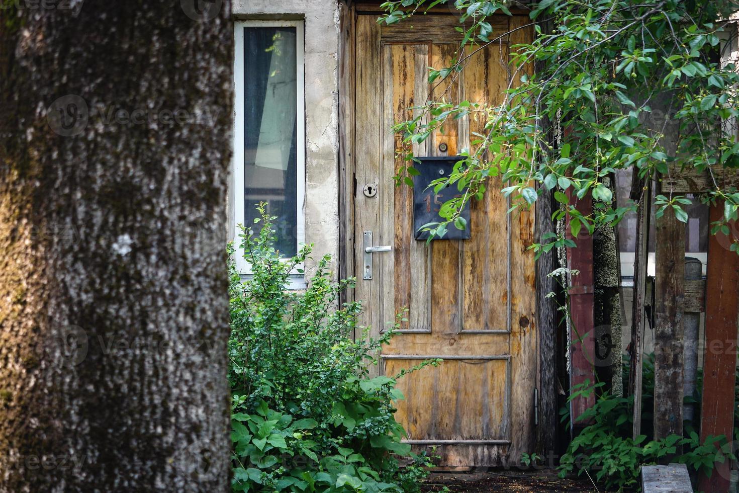 porte en bois avec boîte aux lettres derrière un cerisier avec des feuilles et des baies non mûres photo