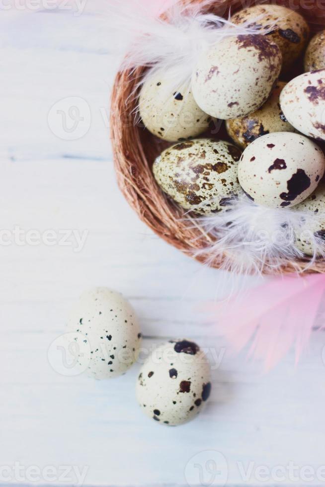 oeufs de caille au nid avec des plumes blanches et roses, sur une table en bois blanc photo