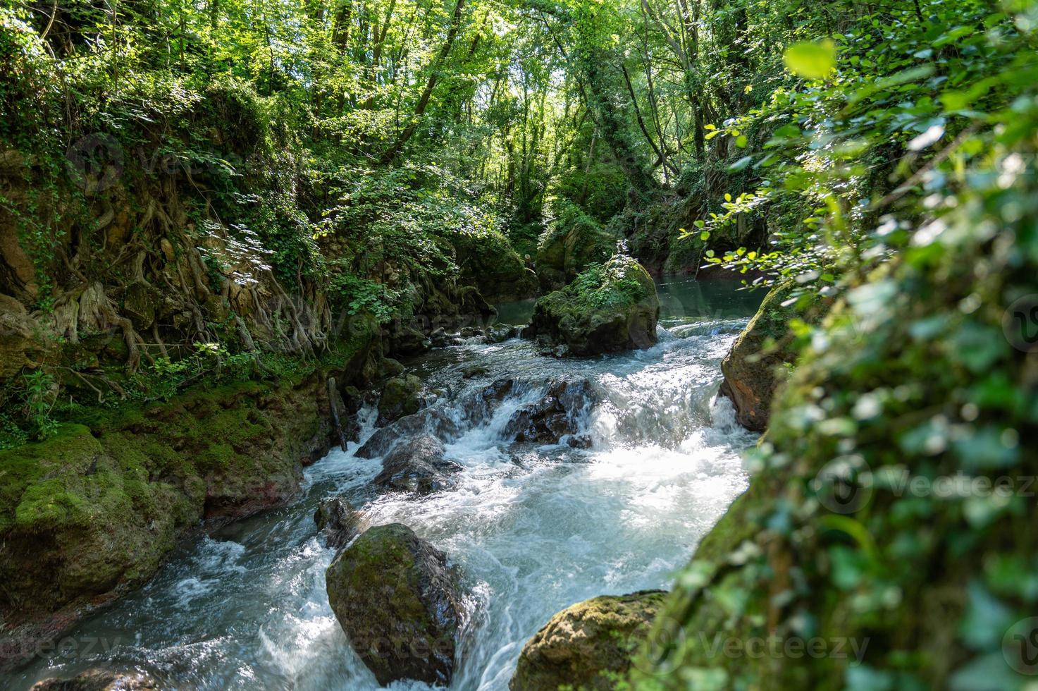 rivière dans les bois venant de la cascade de la marmore photo