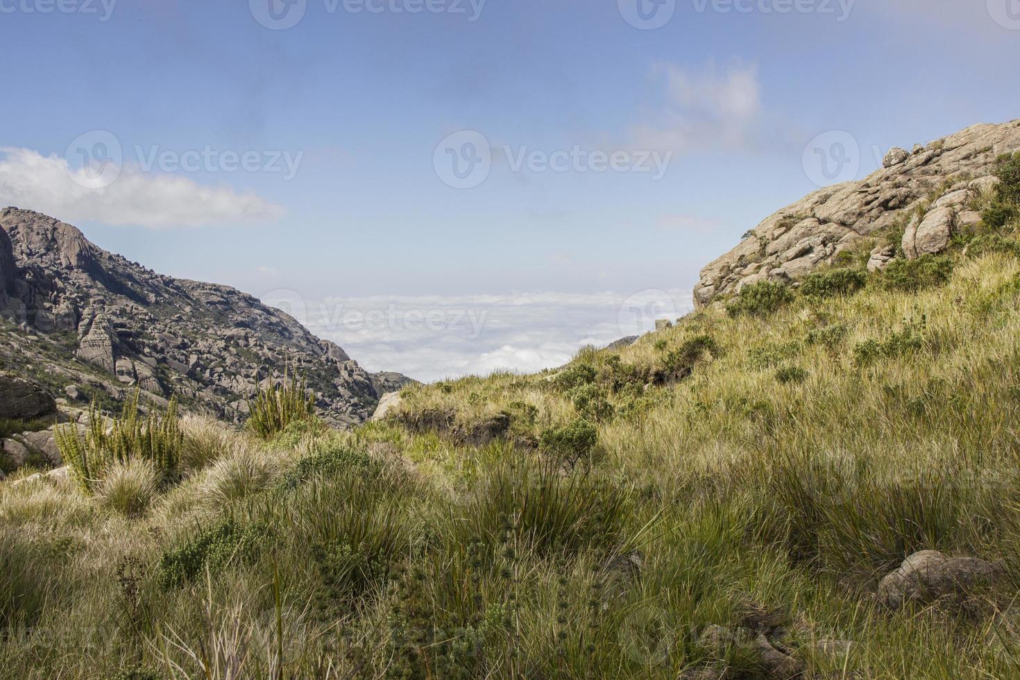 à travers les sentiers d'Itatiaia photo