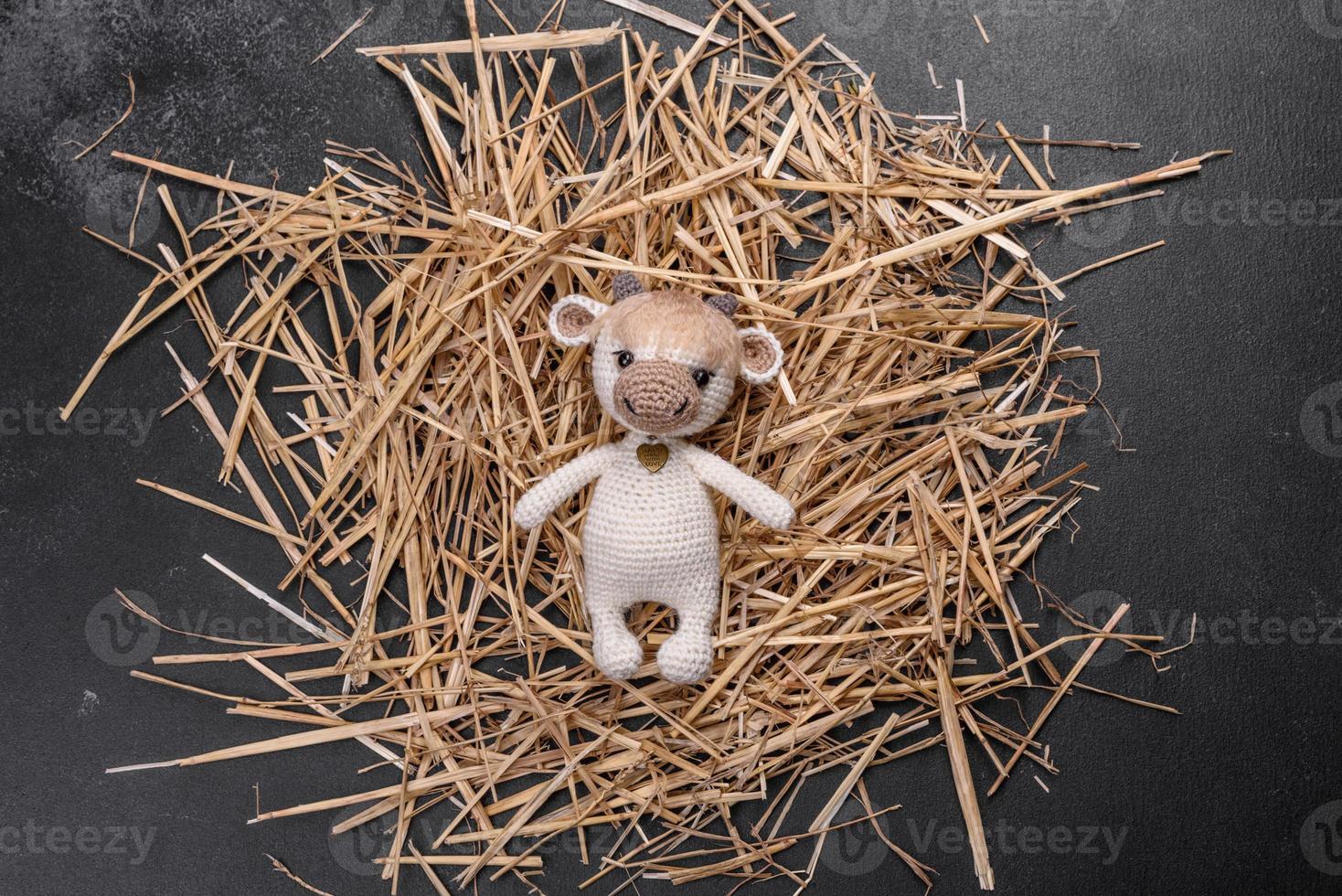 taureau jouet tricoté de fils clairs sur fond sombre photo