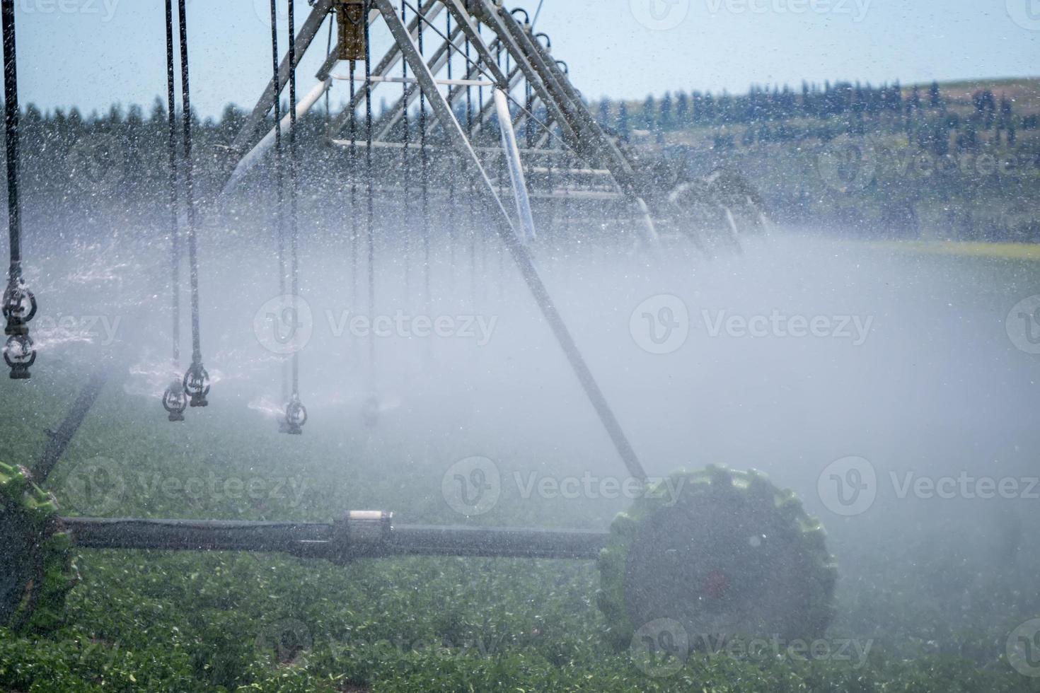 équipement d'irrigation sur le terrain de la ferme aux beaux jours photo