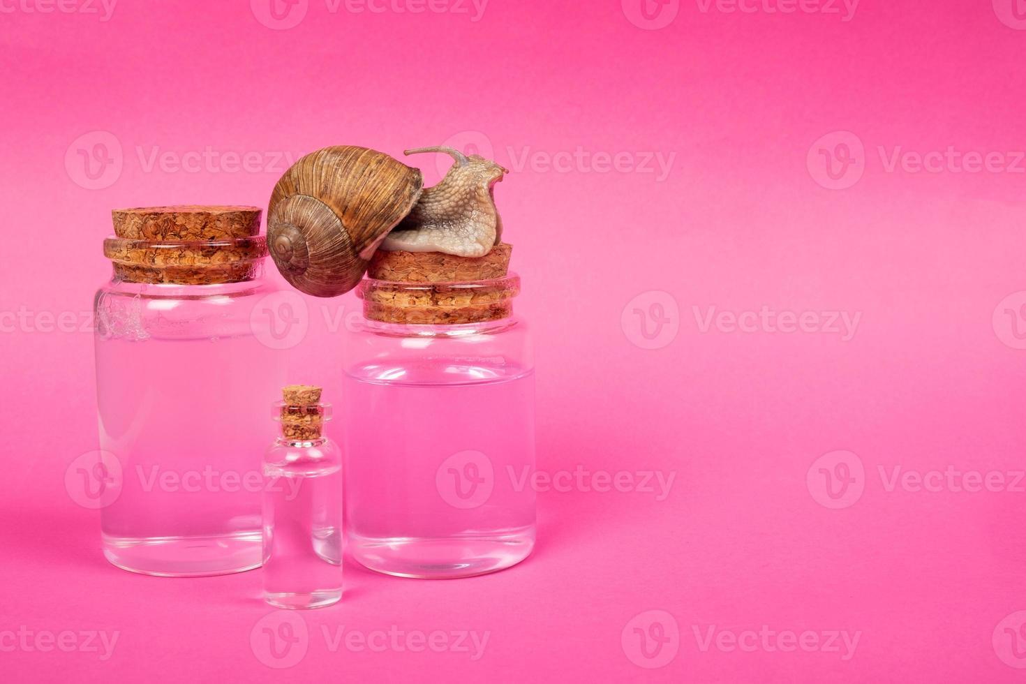 bouteilles de cosmétiques avec ajout de mucine d'escargot, soins naturels de la peau photo