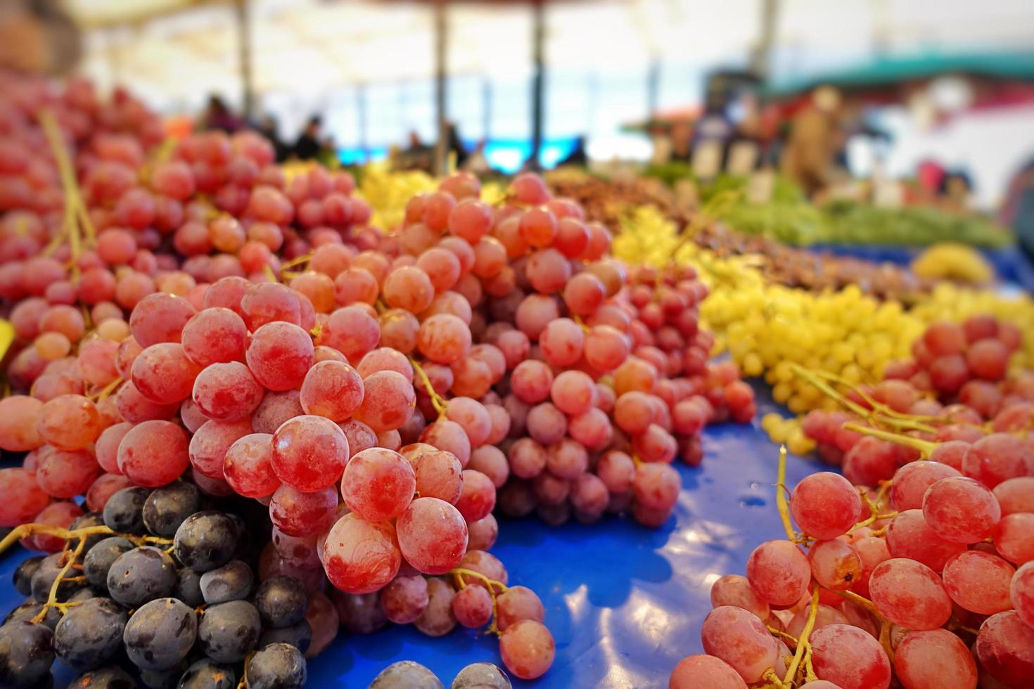 raisin rouge bio sain photo