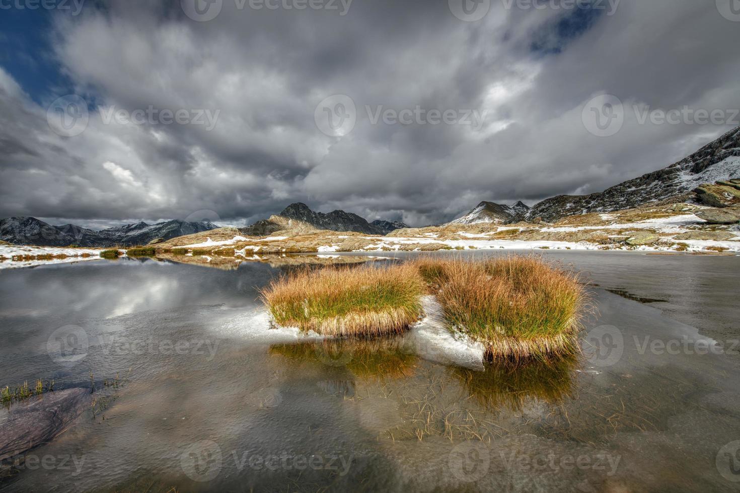 touffes de prairie dans un petit lac alpin photo