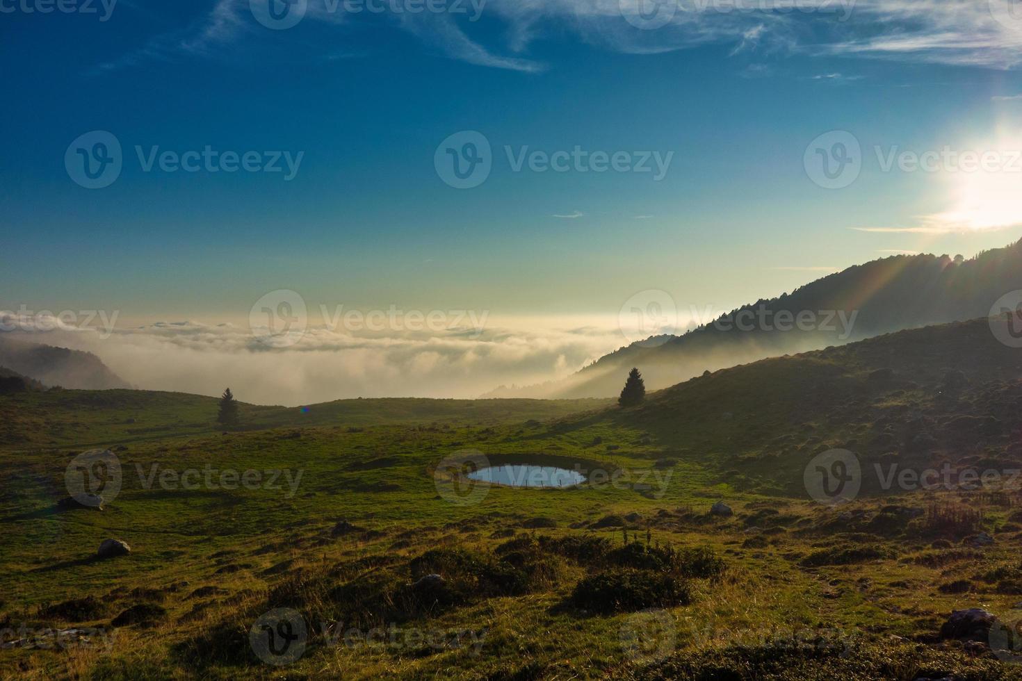 petit bassin d'eau pour vaches de montagne photo