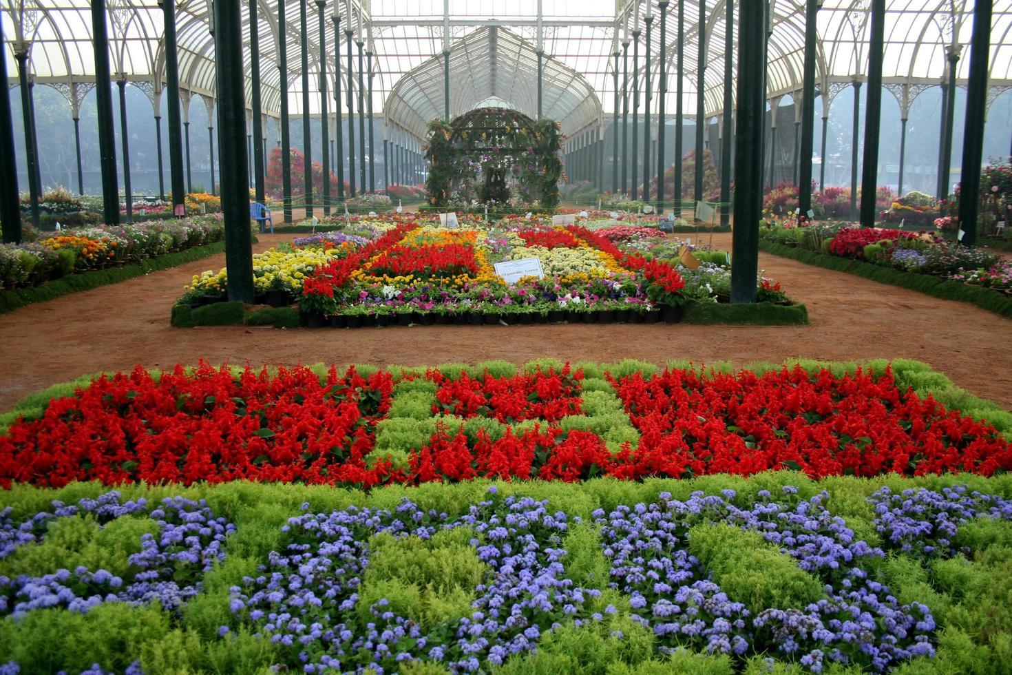 exposition de fleurs décoratives photo