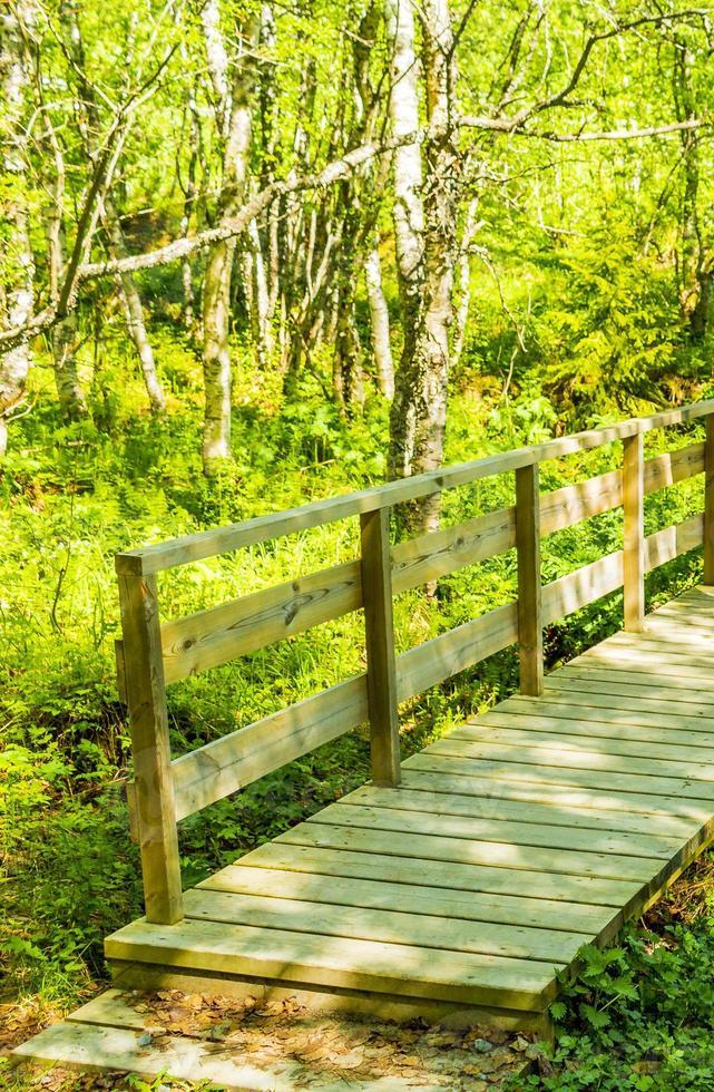 petit pont en bois et sentier sur la rivière hemsedal norvège. photo
