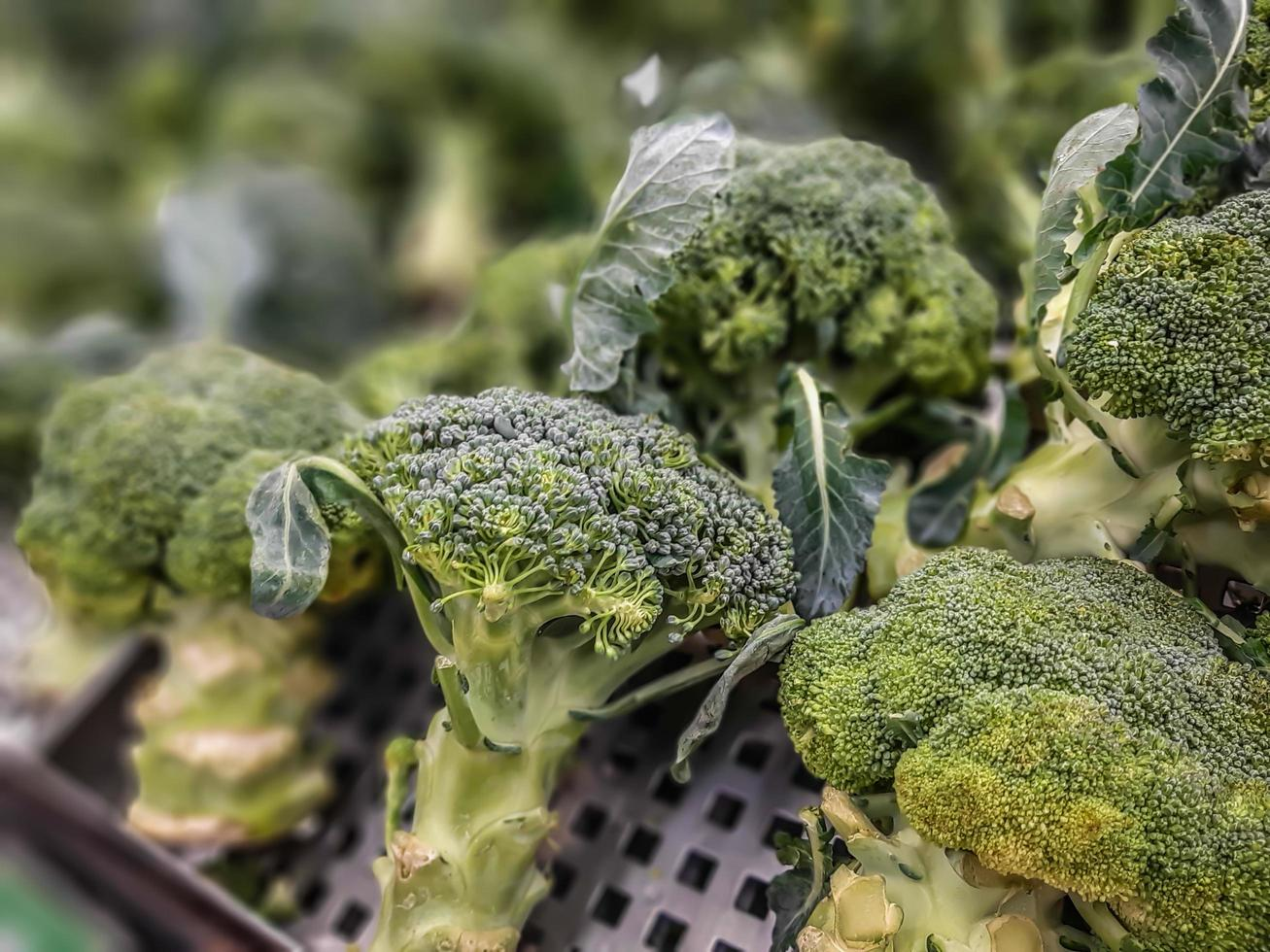 brocoli frais dans une pile au supermarché, brocoli cru vert frais et sain. fond, texture. photo