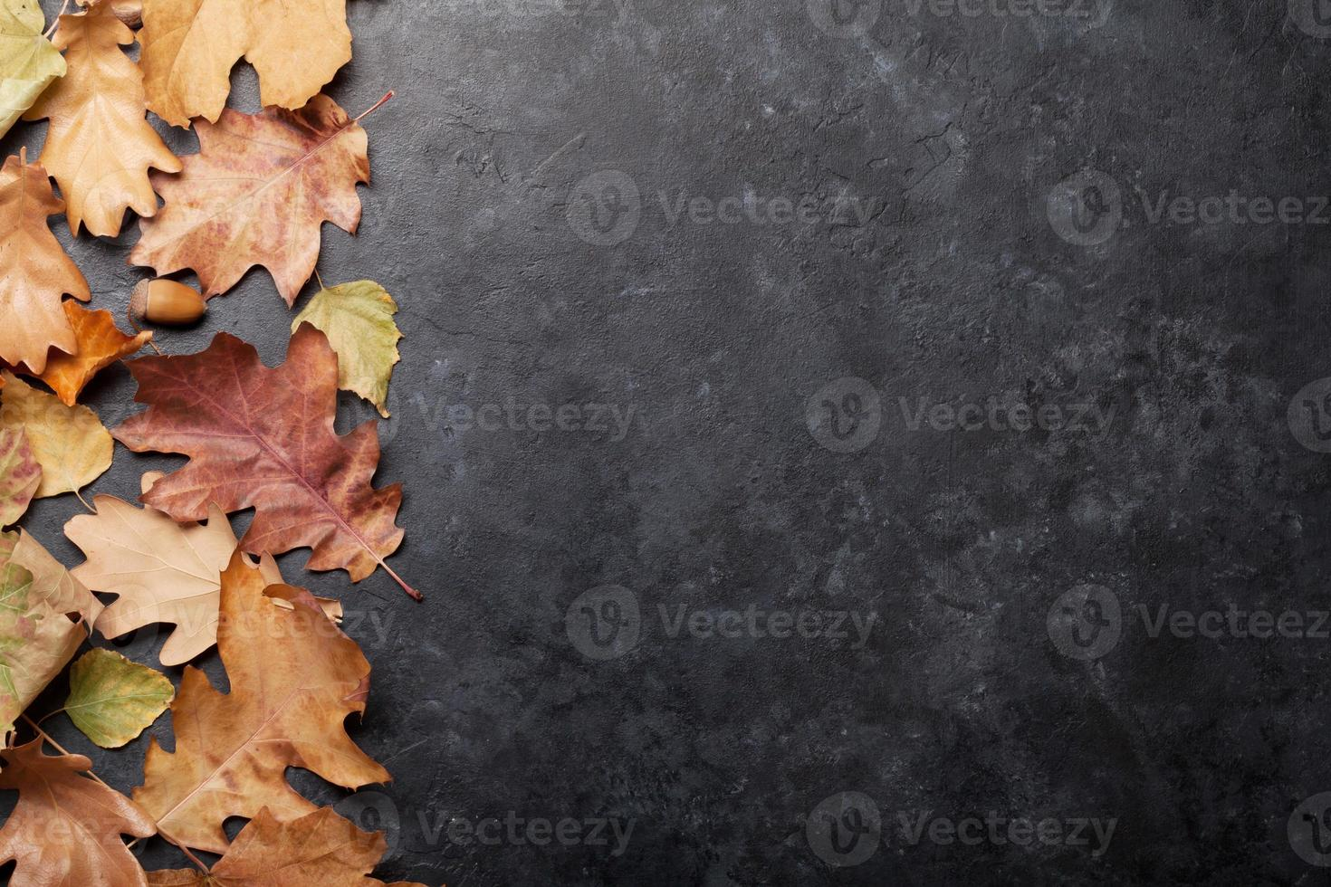 automne fond hiver photo