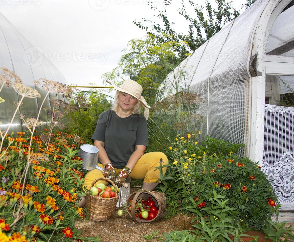 une agricultrice se repose près de la serre. récolter des tomates, des poivrons et des concombres. l'automne dans le pays. photo