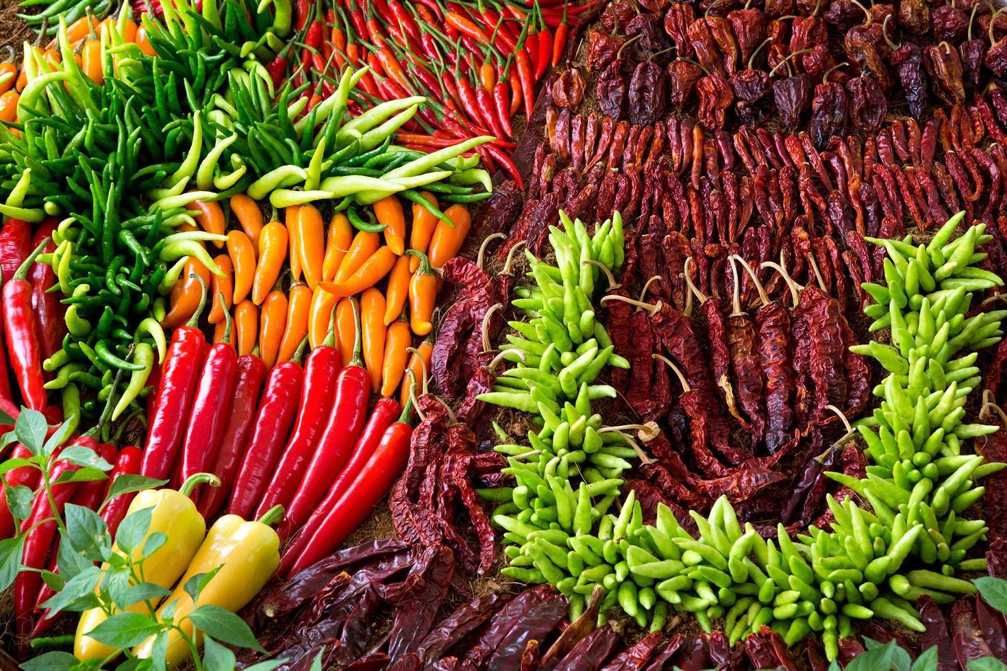 motifs colorés de poivrons pour la cuisine. photo