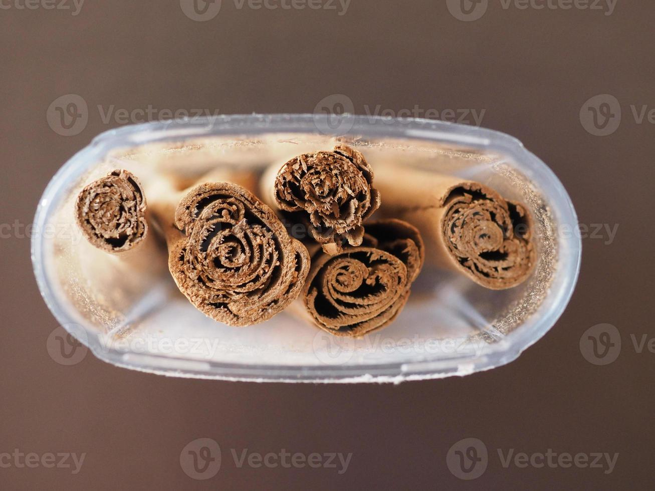 épices cannelle cinnamomum verum photo