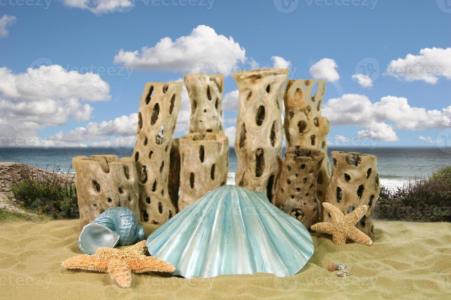 fond d'océan de coquille de sirène photo