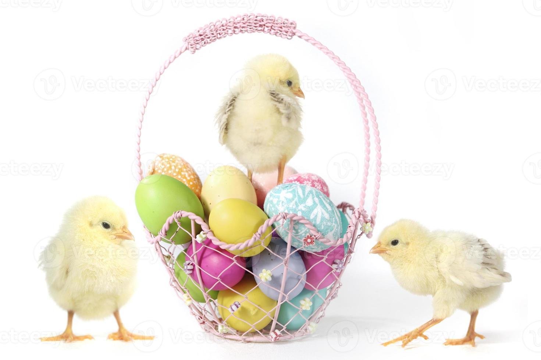 image sur le thème des vacances avec des poussins et des œufs photo