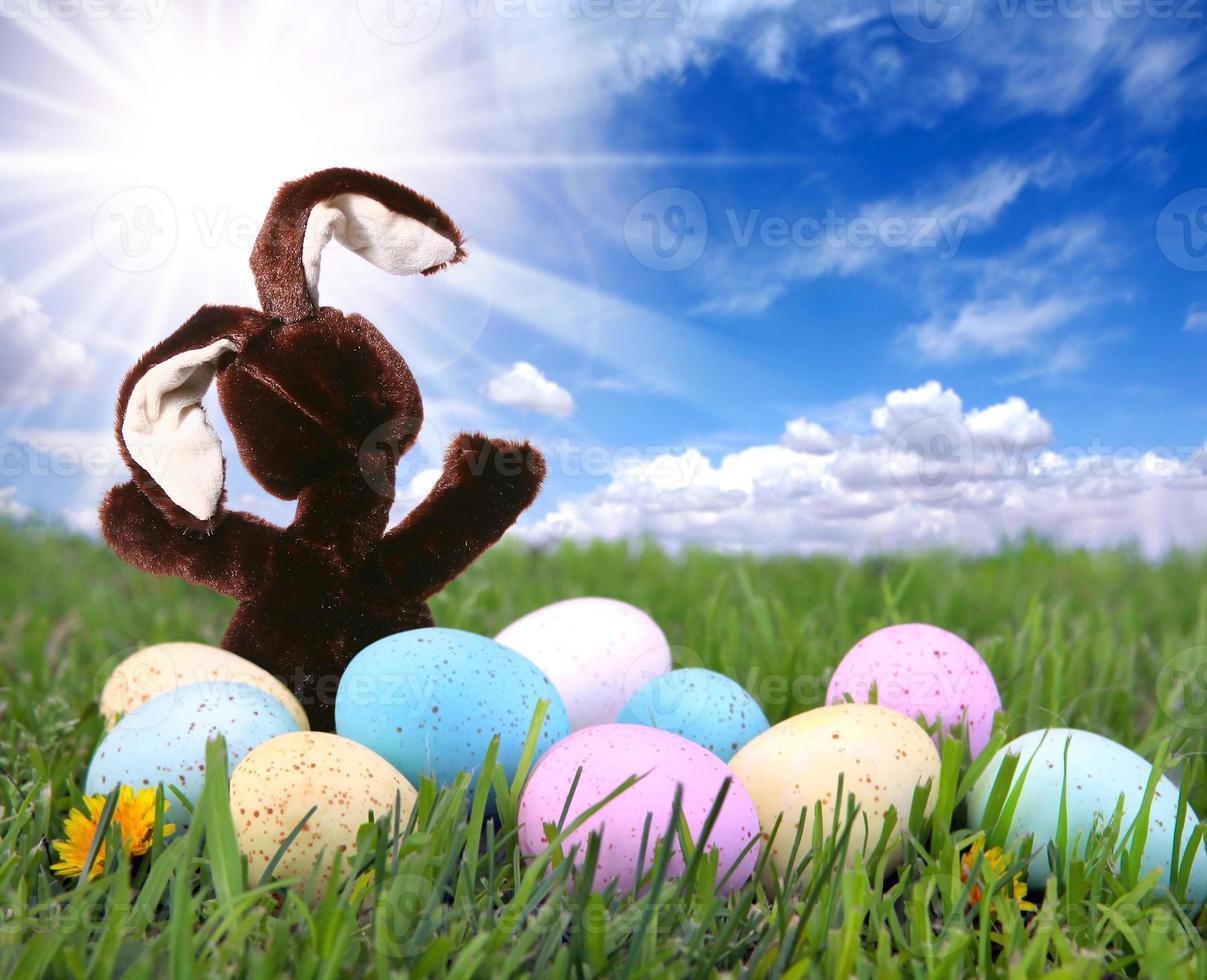 lapin dans l'herbe avec des oeufs colorés de pâques photo