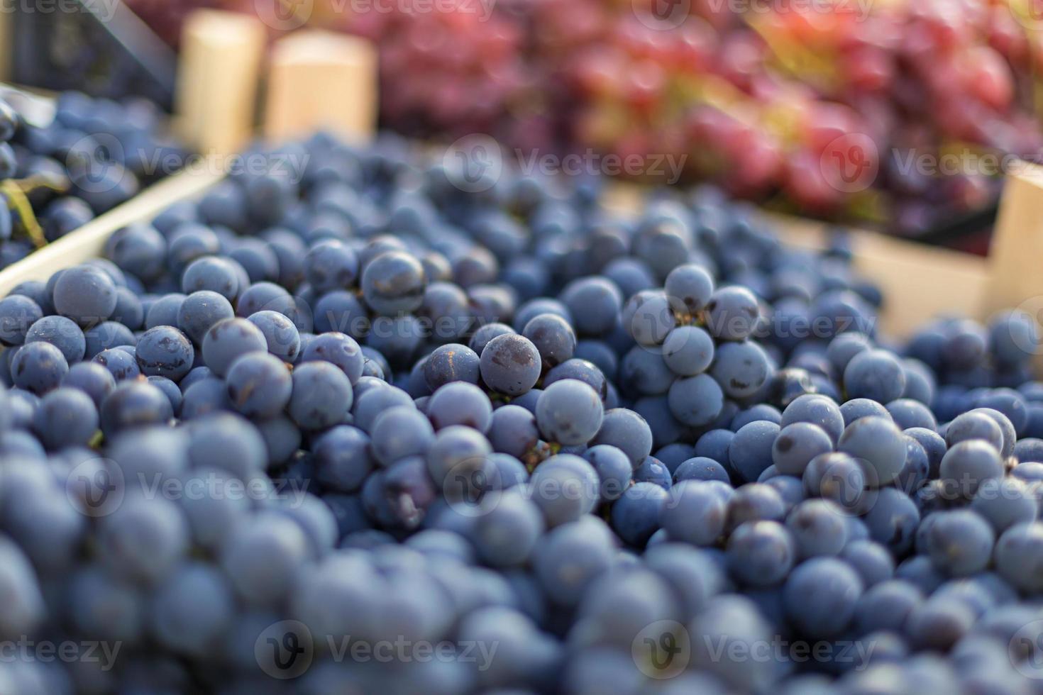 raisins au marché photo