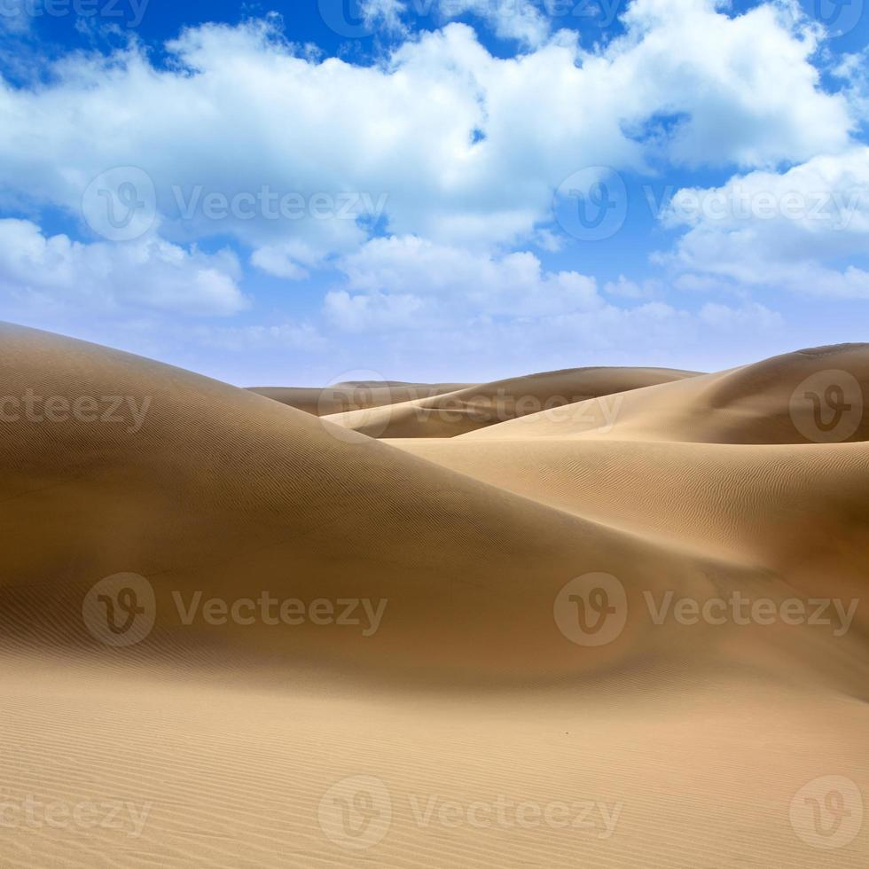 désert de dunes de sable à maspalomas gran canaria photo
