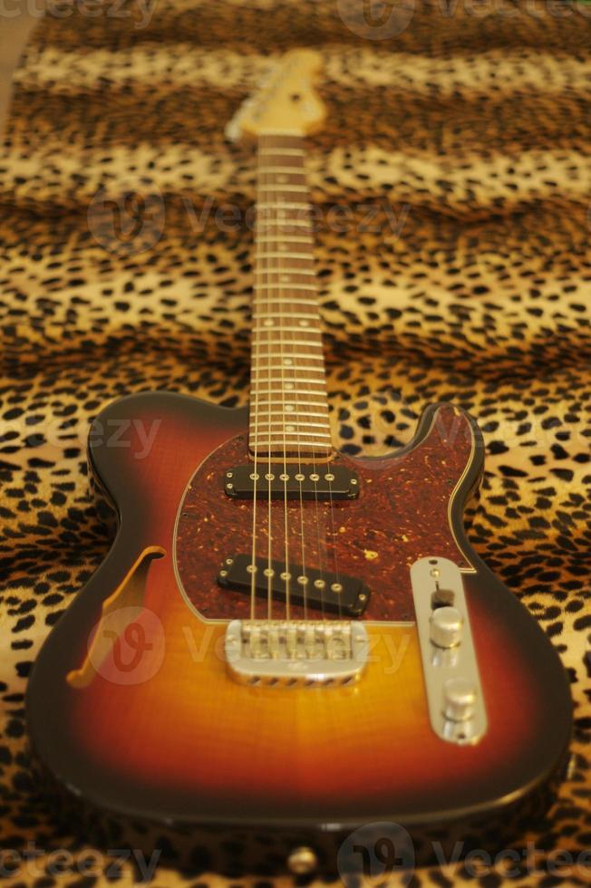 guitare léopard photo