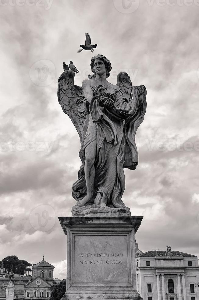 pigeon et ange photo