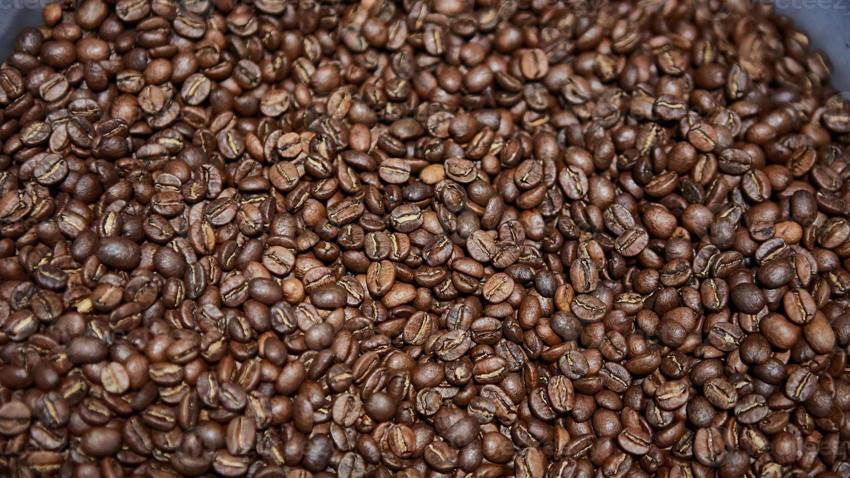 grains de café fraîchement torréfiés photo