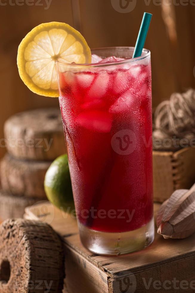 lunade limonade aux bleuets photo