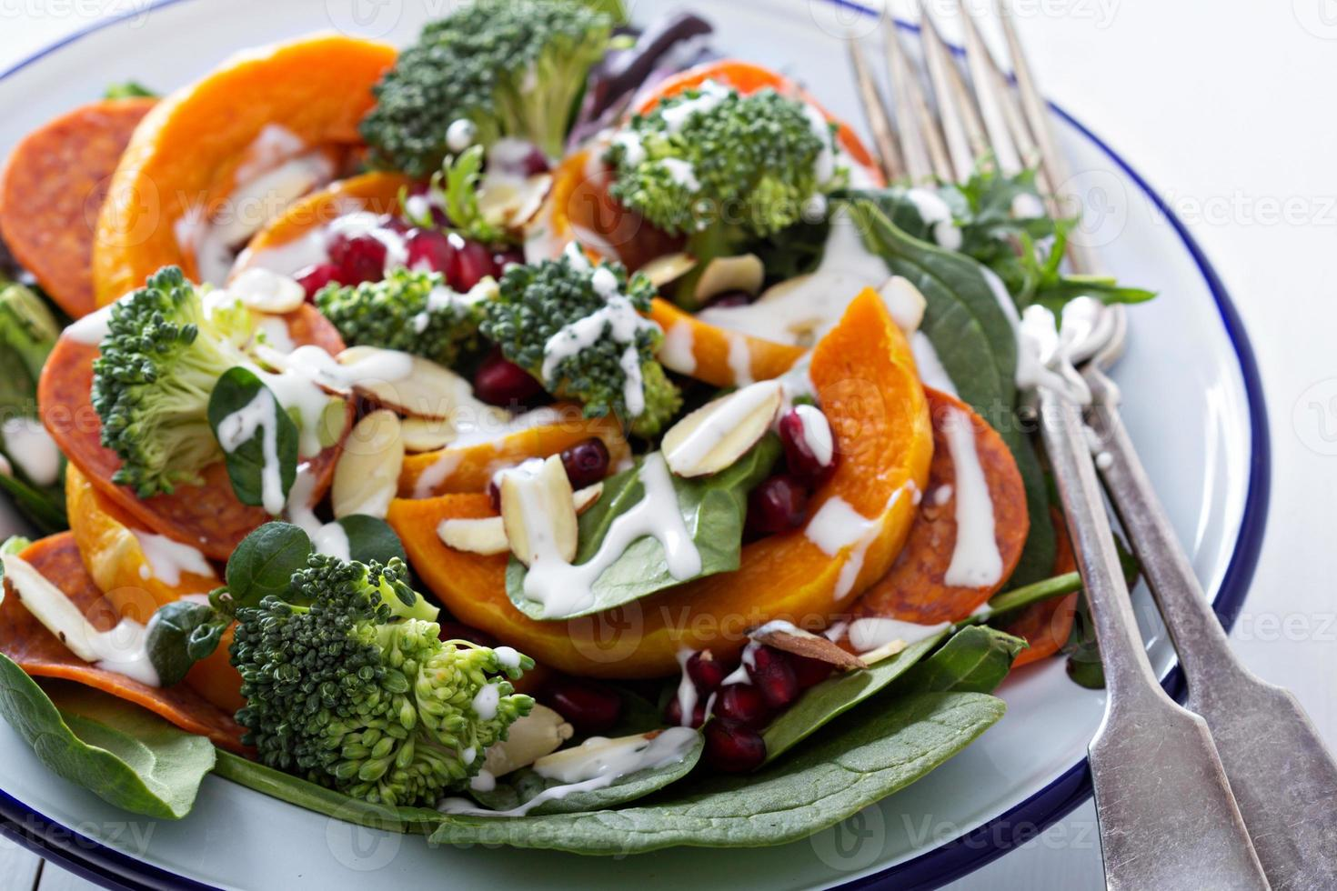 salade de légumes, pepperoni et grenade photo