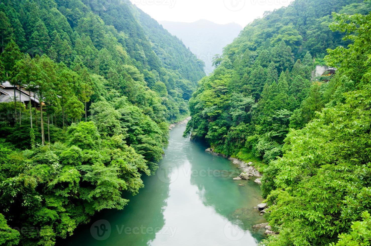 vallée de la rivière photo