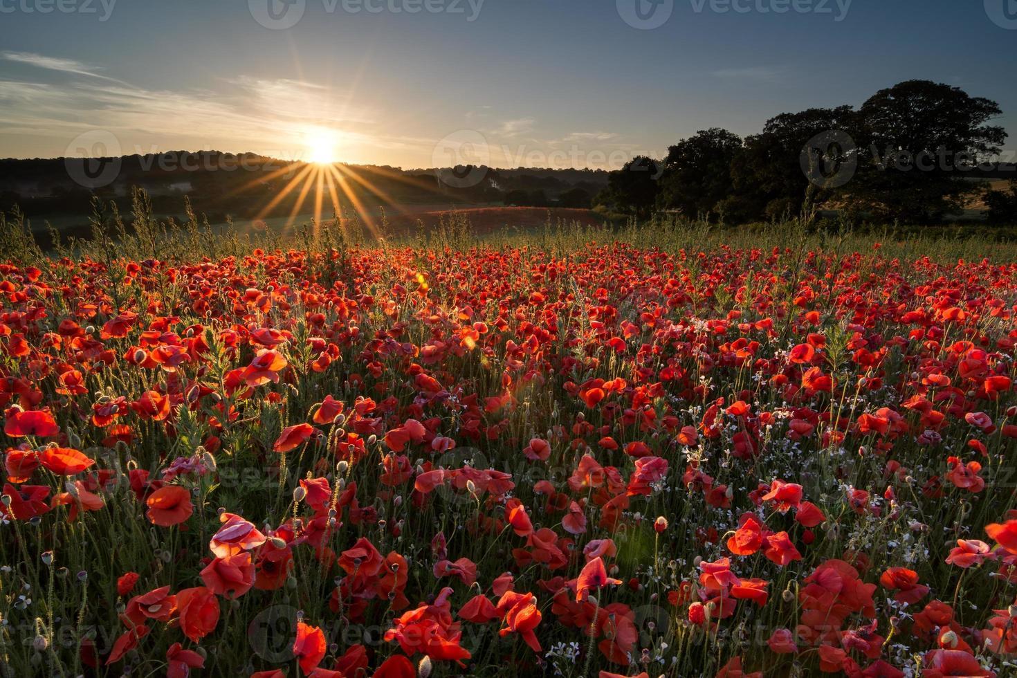 lever du soleil solstice d'été photo