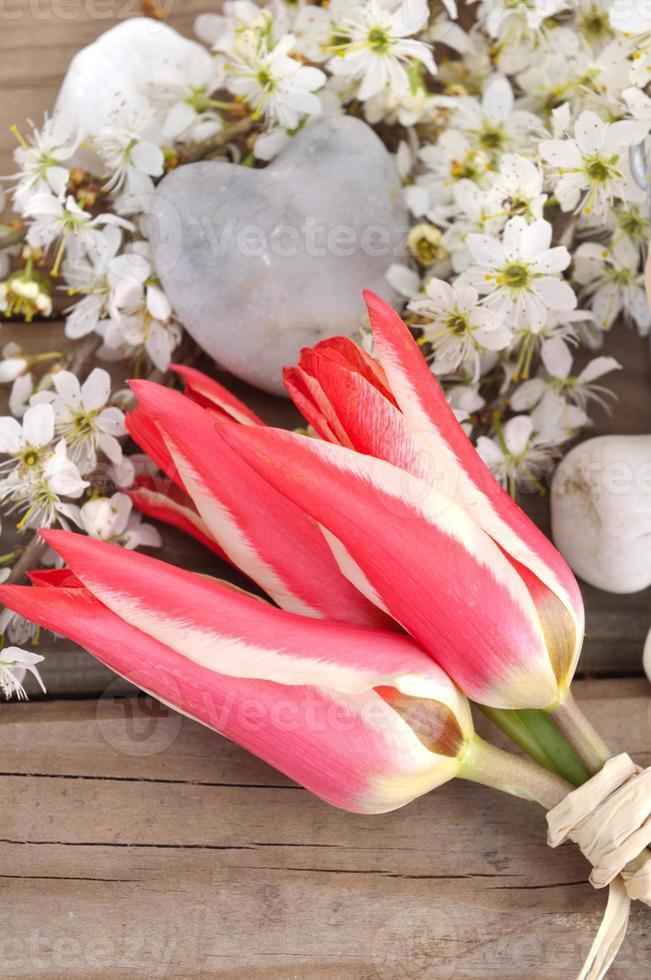 printemps romantique photo