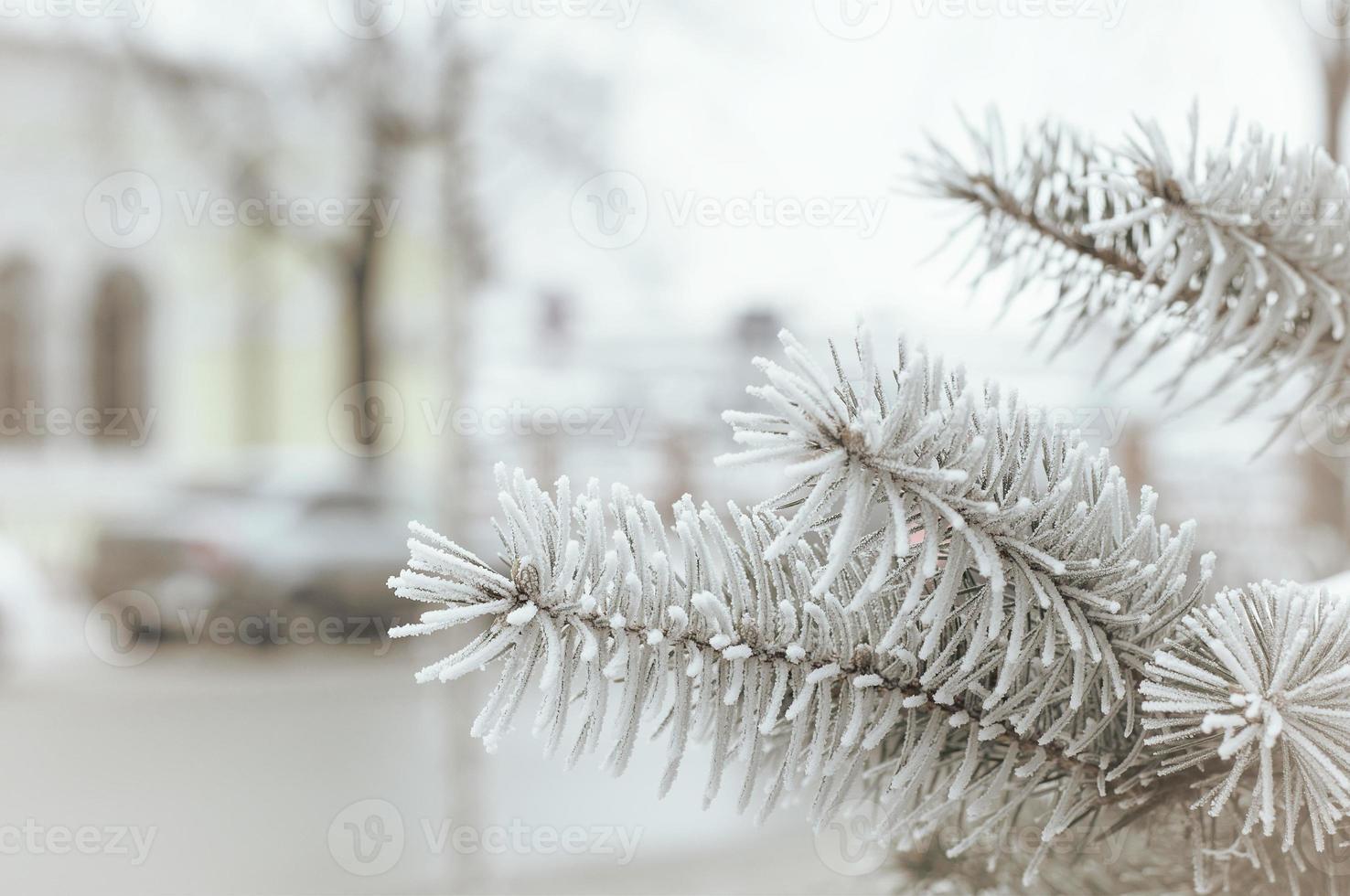 ville d'hiver photo