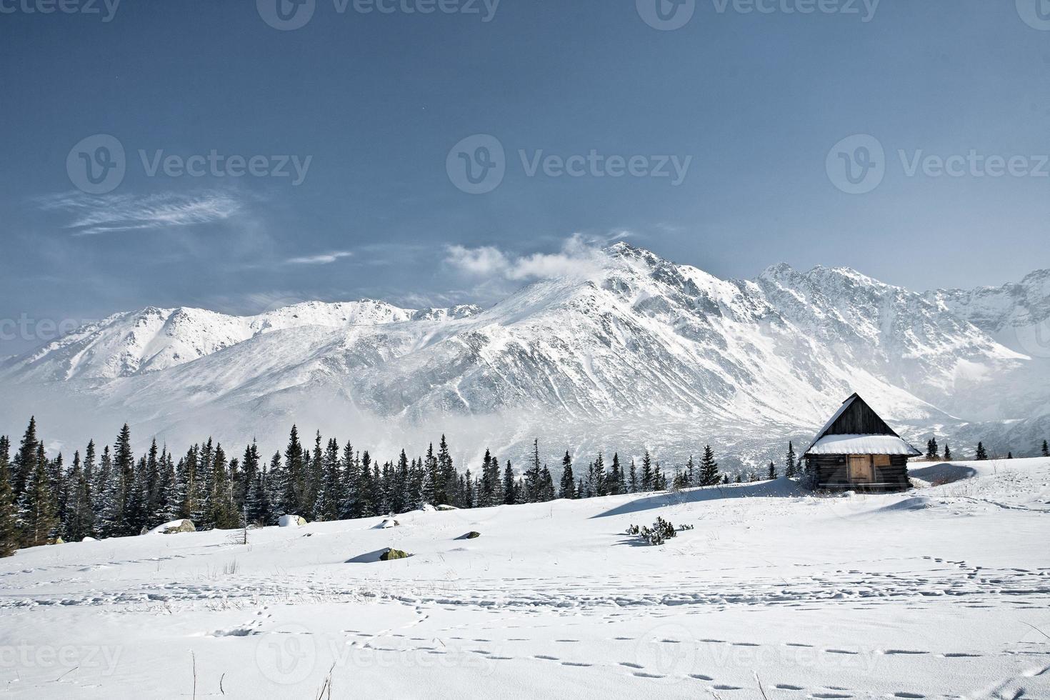 montagnes de tatra en hiver photo