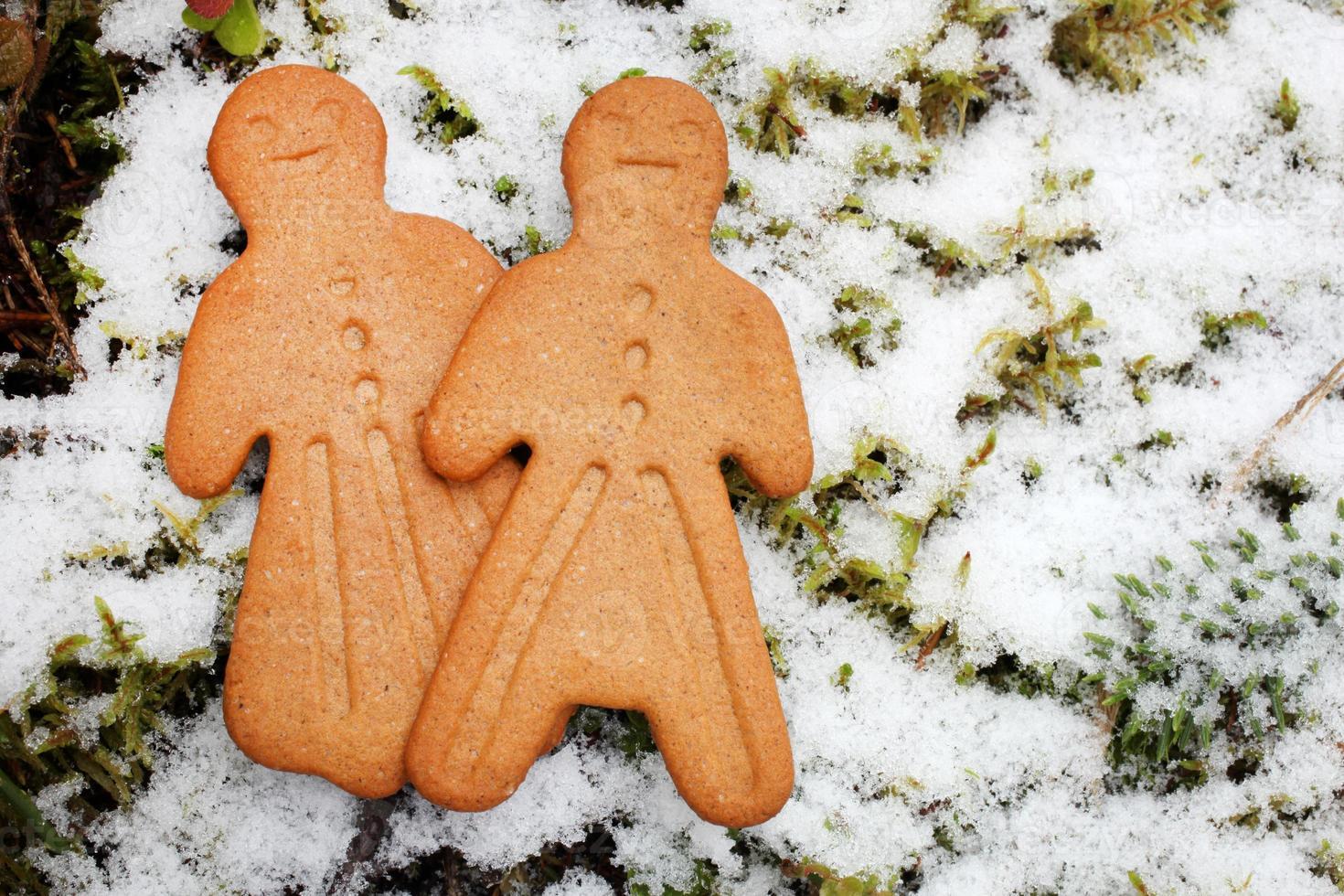 biscuits de pain d'épice sur fond d'hiver photo