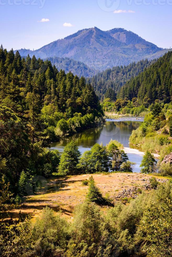 forêt ancienne photo