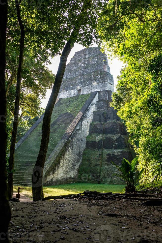 ruines mayas à tikal, parc national. voyager au guatémala. photo