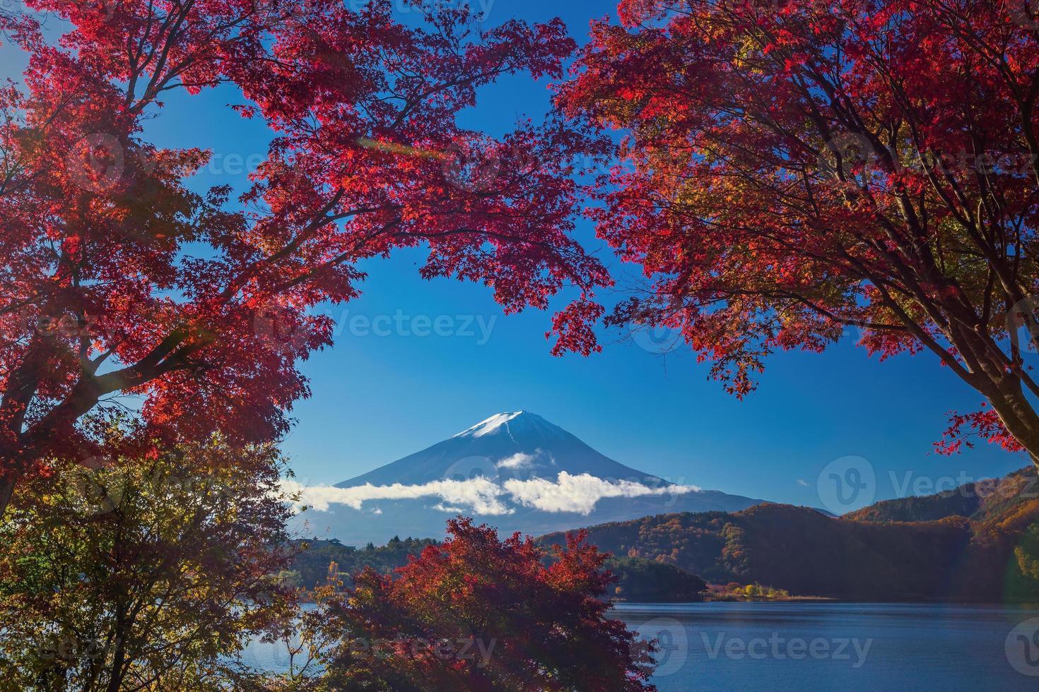mt. Fuji en automne photo