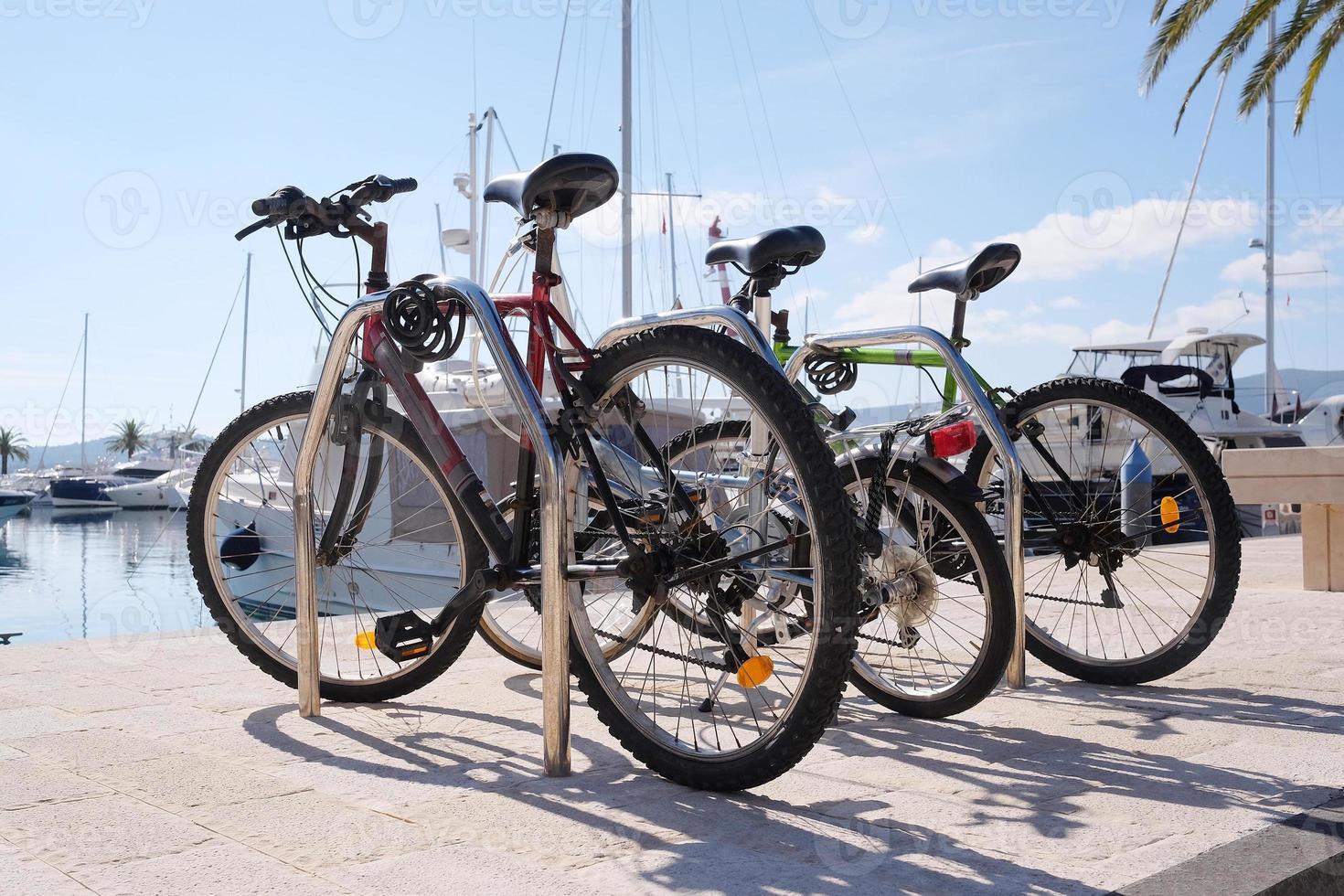 vélos photo