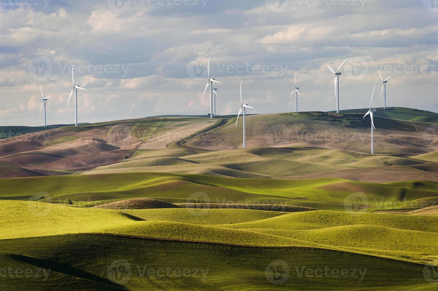 éoliennes steptoe butte photo