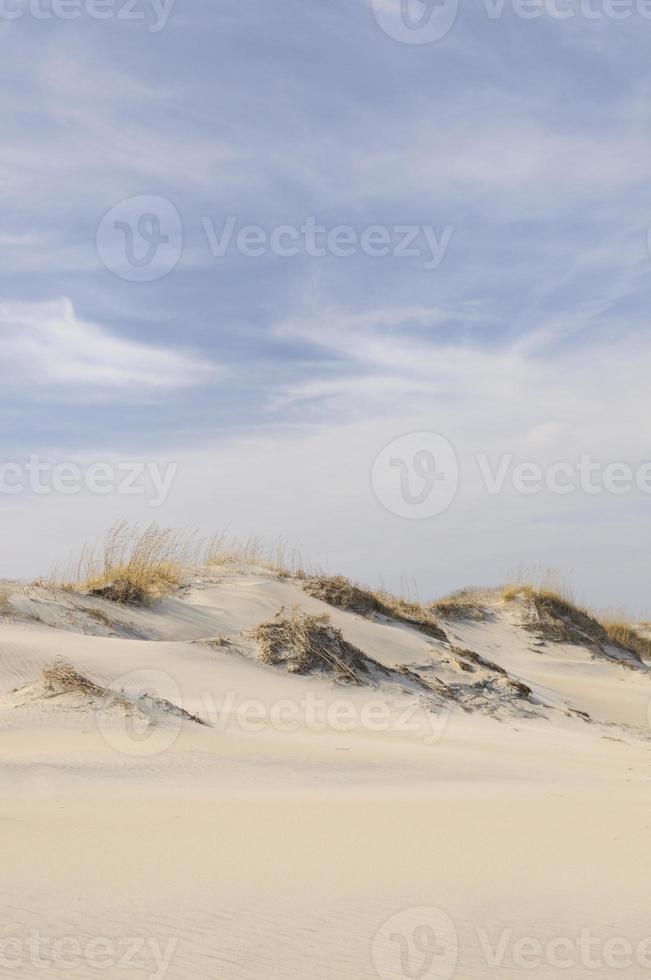 dunes de sable le jour venteux photo