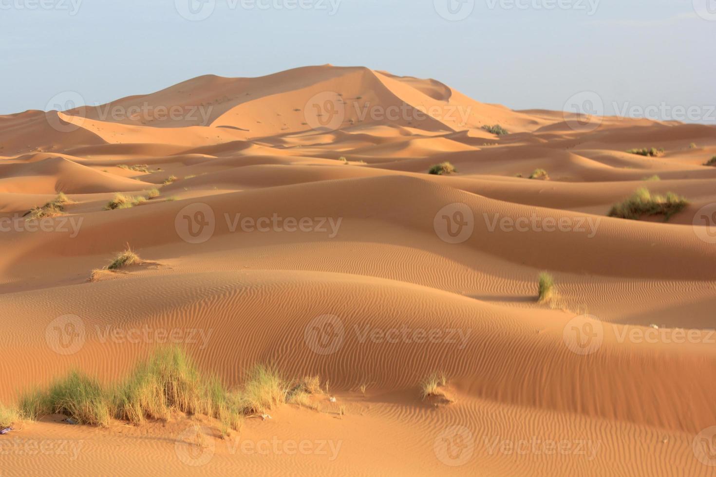 sables du sahara photo