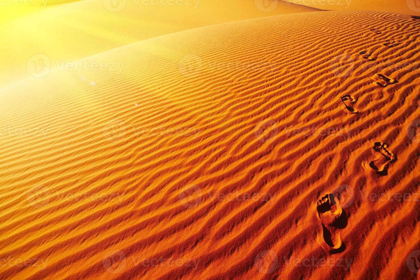 empreintes de pas sur la dune de sable photo