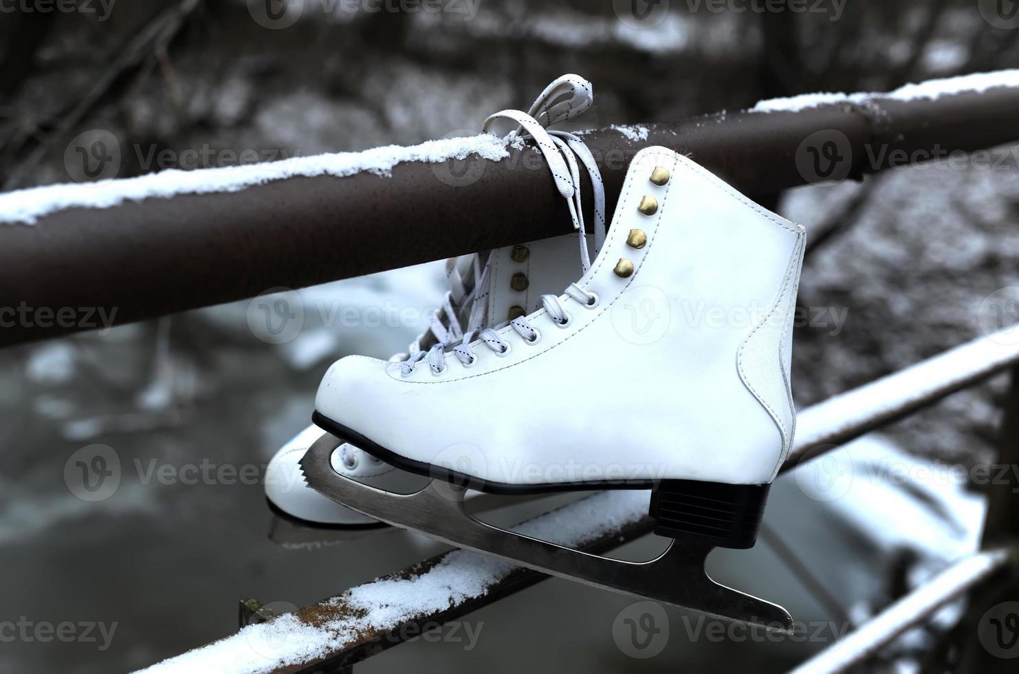 patins féminins photo
