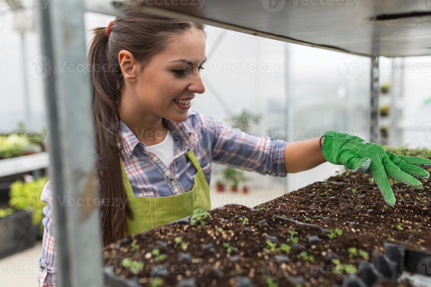 jeune femme botaniste photo