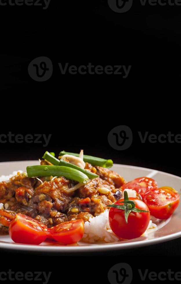 poulet szechuan avec riz blanc sur une plaque photo