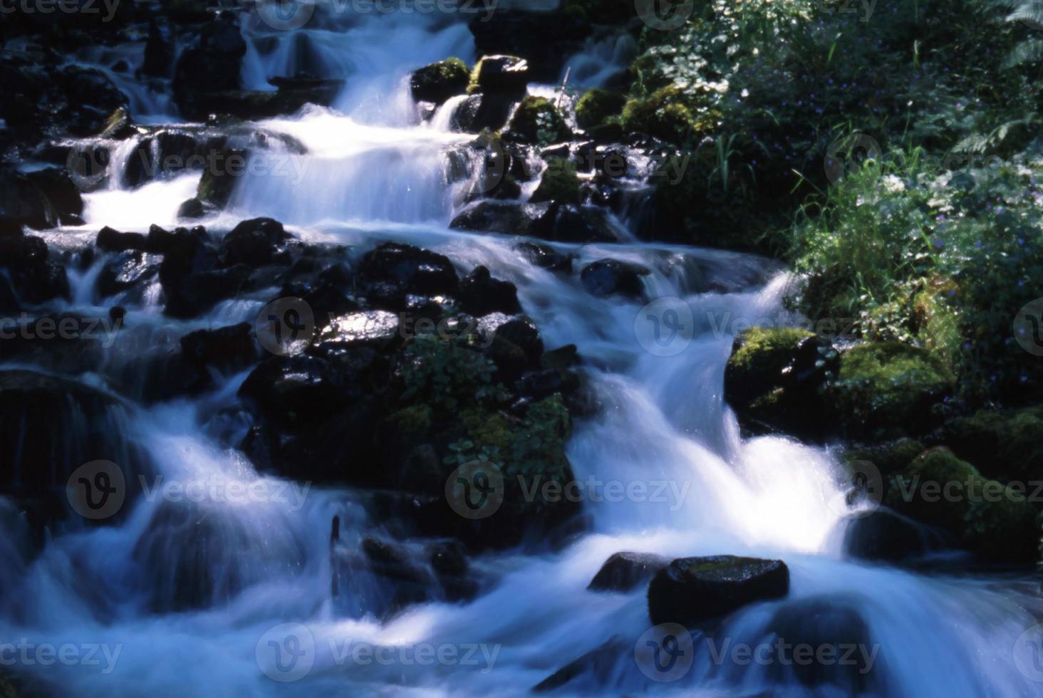 Oregon en plein air photo