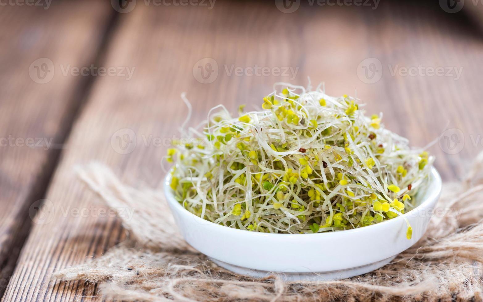 germes de brocoli frais photo
