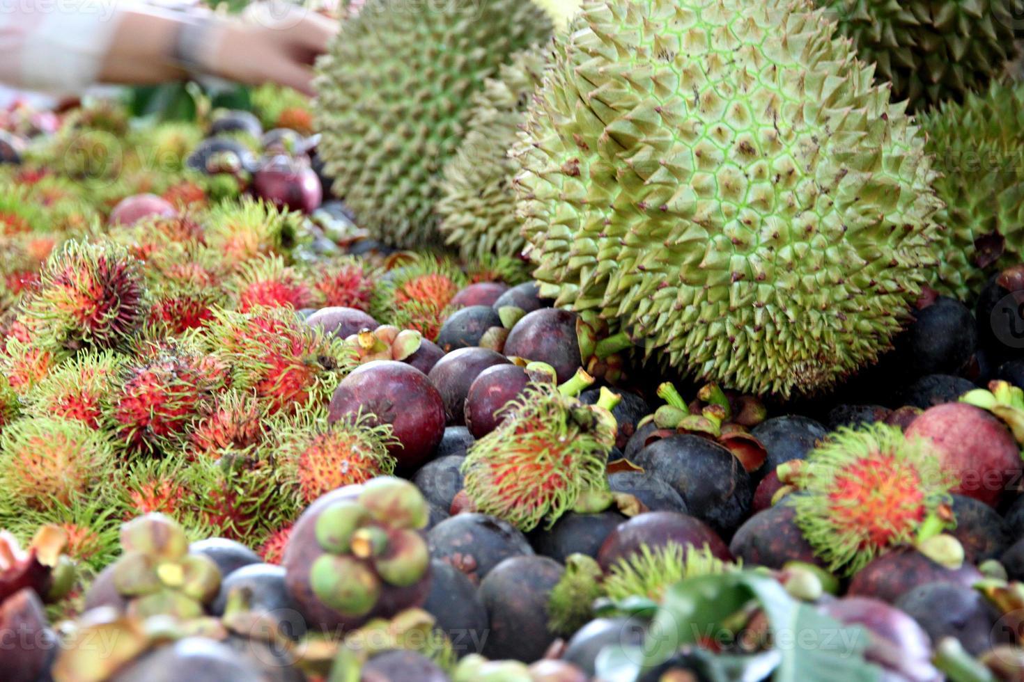 beaucoup de fruits sur la table. photo