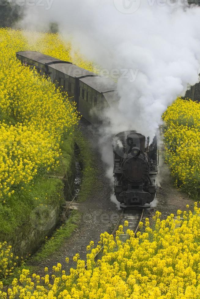 train à vapeur photo
