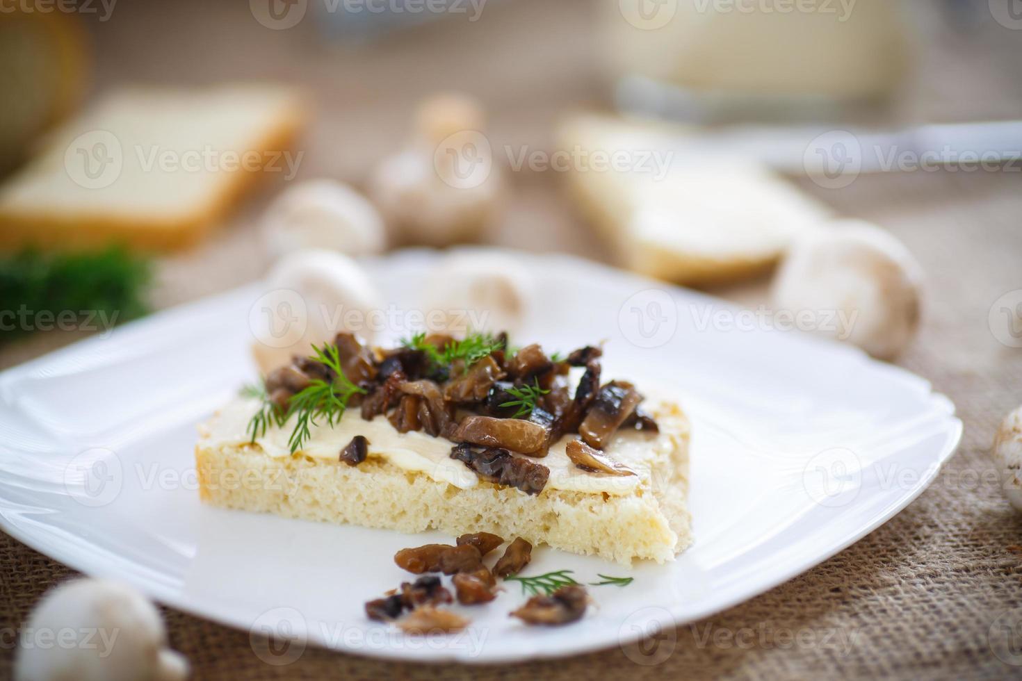sandwich aux champignons photo